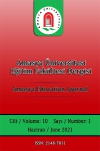 Amasya Education Journal